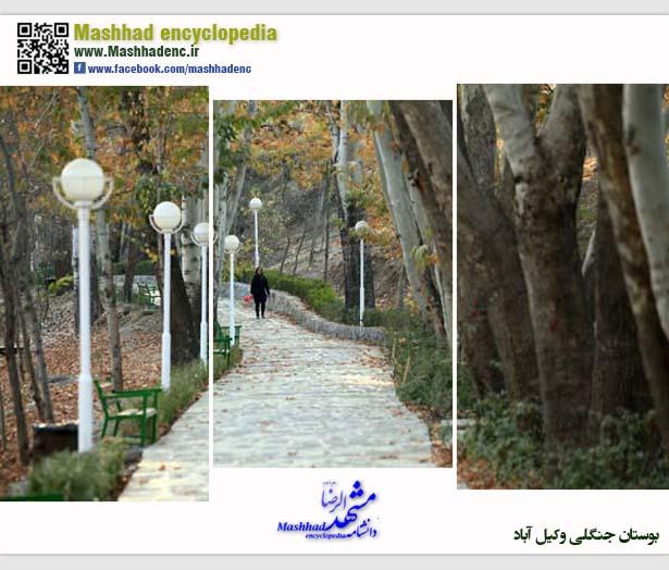 park vakilabad-3