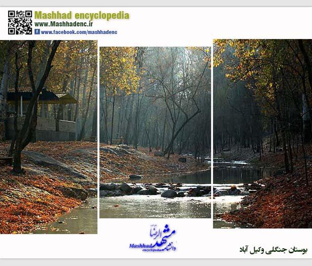 park vakilabad-4