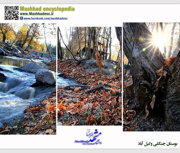 park vakilabad-5